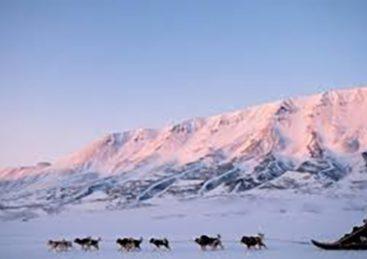 Arktiske skrøner – Jørn Riels fortællinger fra Nordøstgrønland